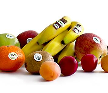 Ekologiska fruktkorgar för leverans